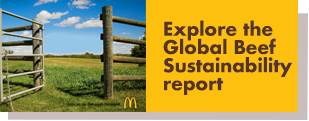 Explore the Beef Sustainability Report
