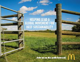 The beef sustainability report cover
