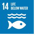 Goal 14: Life below water