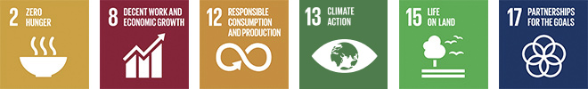 Goal 2: Zero hunger. Goal 8: Decent work and economic growth. Goal 12: Responsible consumption and production. Goal 13: Climate action. Goal 15: Life on land. Goal 17: Partnerships for the goals.