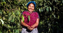 A coffee farmer smiling and holding a bundle of coffee beans