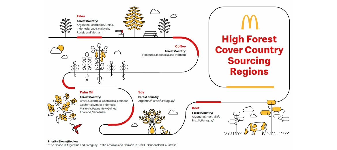 high forest cover country sourcing regions infographic